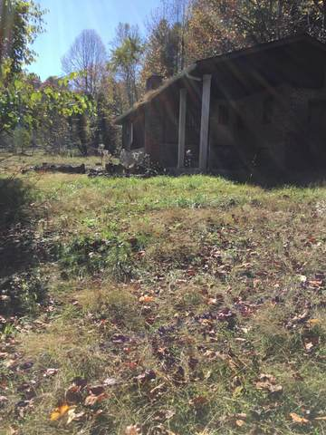 Tbd Happy Valley, Clintwood, VA 24228 (MLS #9914692) :: Conservus Real Estate Group