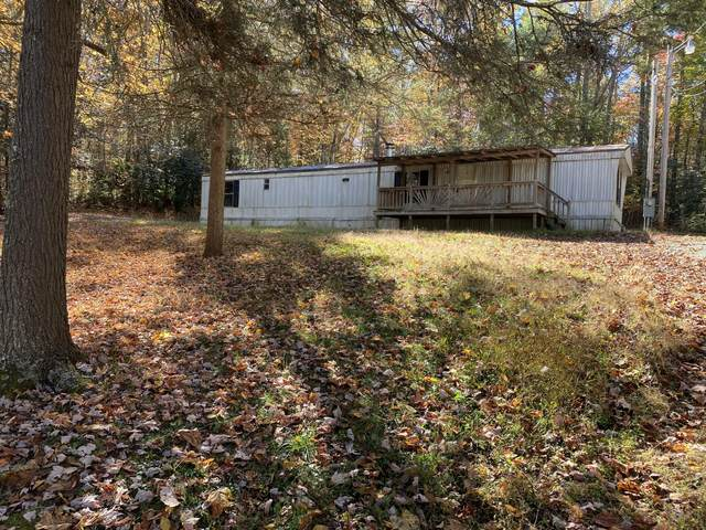 245 Deer Creek Crossing, Mountain City, TN 37683 (MLS #9914695) :: Conservus Real Estate Group