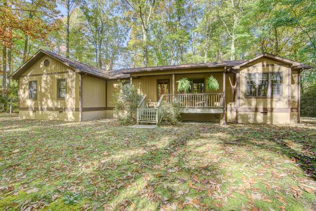 244 Markland Hill Road, Roan Mountain, TN 37687 (MLS #9914718) :: Highlands Realty, Inc.