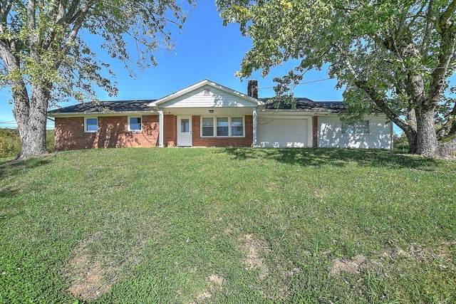 135 Fox Mays Road, Greeneville, TN 37745 (MLS #9914721) :: Tim Stout Group Tri-Cities