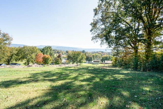 Lot 4 Elm Springs Road, Church Hill, TN 37642 (MLS #9914758) :: Conservus Real Estate Group