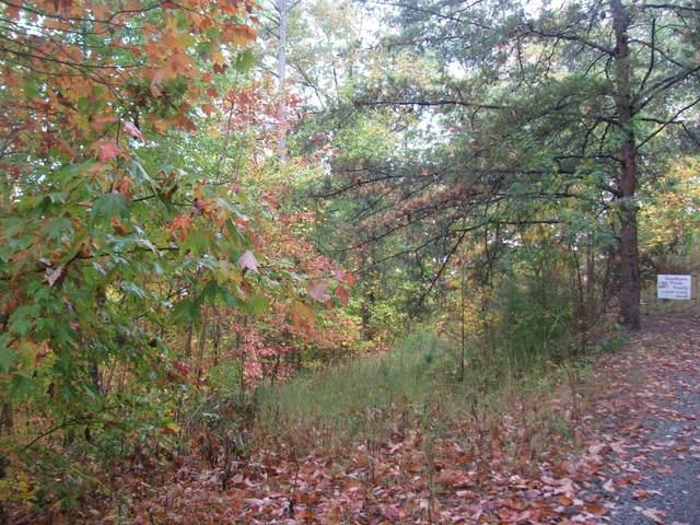 0 Bluebird Ridge Way, Sevierville, TN 37876 (MLS #9914803) :: Tim Stout Group Tri-Cities