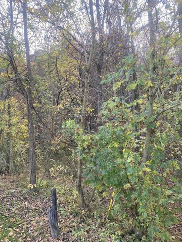 Tbd Carters Valley Rd S Of Road, Kingsport, TN 37660 (MLS #9914805) :: Highlands Realty, Inc.