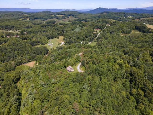 Tbd Bluegrass Road, Roan Mountain, TN 37687 (MLS #9914813) :: Conservus Real Estate Group