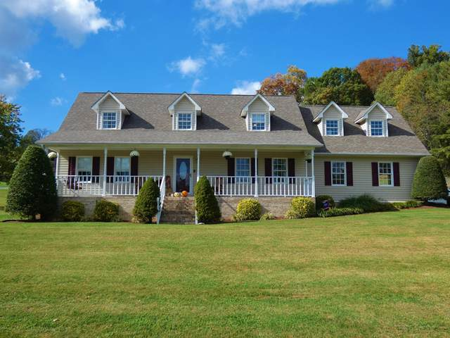 440 Blakley Drive, Kingsport, TN 37664 (MLS #9914839) :: Conservus Real Estate Group