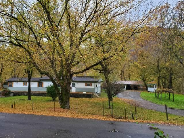 17066 North Fork River Road, Abingdon, VA 24210 (MLS #9914876) :: Conservus Real Estate Group