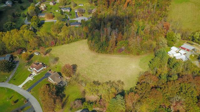 Tbd Silver Maple Drive, Johnson City, TN 37659 (MLS #9914889) :: Conservus Real Estate Group