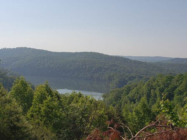 Lot 611 Chimney Rock Road, New Tazewell, TN 37825 (MLS #9914912) :: Highlands Realty, Inc.