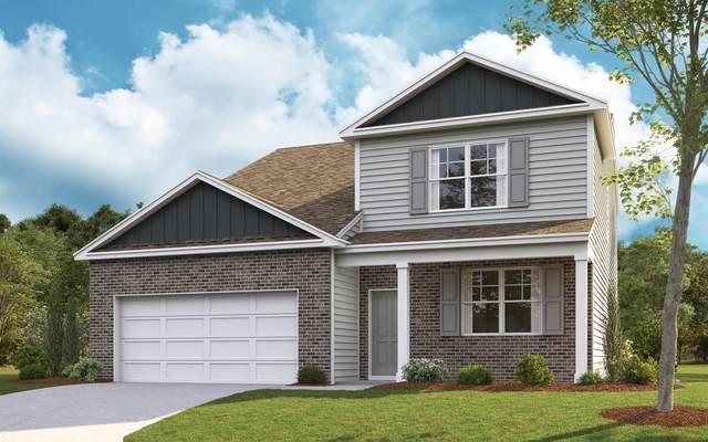 2950 Southbridge Road, Kingsport, TN 37664 (MLS #9915038) :: Red Door Agency, LLC
