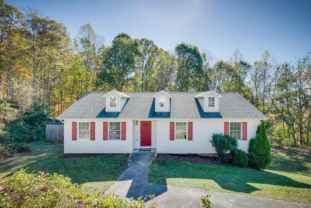 1121 Faye Street, Kingsport, TN 37660 (MLS #9915072) :: Red Door Agency, LLC