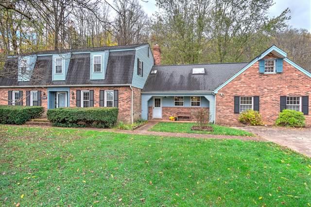 248 Rollin Hills Pvt Drive, Blountville, TN 37617 (MLS #9915178) :: Bridge Pointe Real Estate