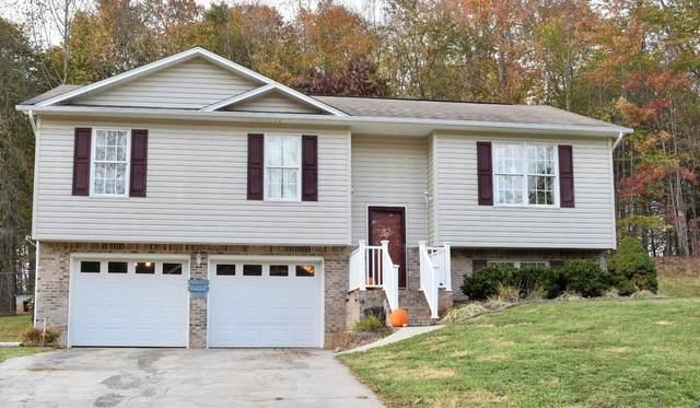 518 Old Village Court, Church Hill, TN 37642 (MLS #9915230) :: Red Door Agency, LLC