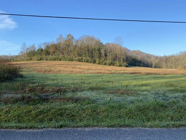Tbd Cave Springs Road, Big Stone Gap, VA 24219 (MLS #9915253) :: Tim Stout Group Tri-Cities