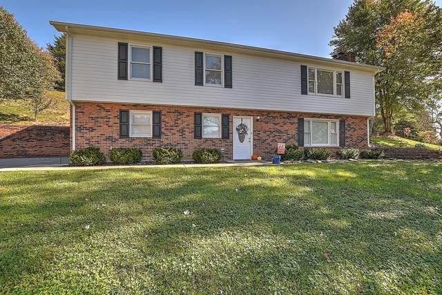 310 Sequoyah Drive, Blountville, TN 37617 (MLS #9915278) :: Bridge Pointe Real Estate