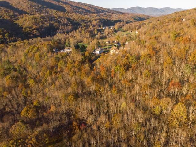 Tbd Persimmon Drive, Big Stone Gap, VA 24219 (MLS #9915302) :: Bridge Pointe Real Estate