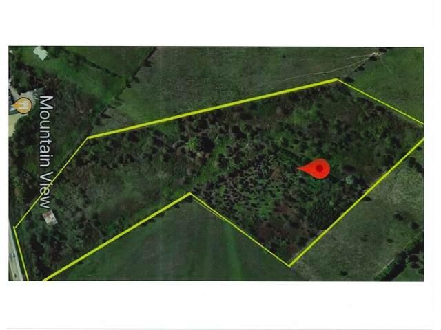 3225 Hwy 11E, Jonesborough, TN 37659 (MLS #9915354) :: Conservus Real Estate Group