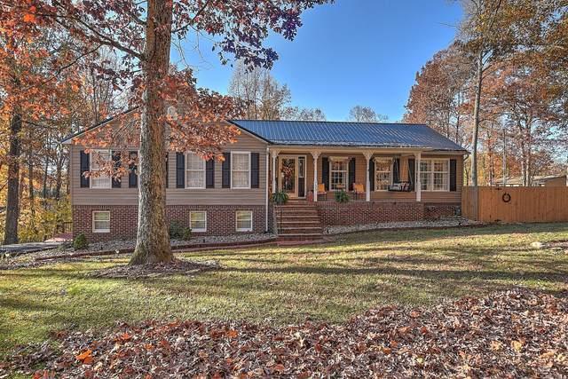 733 Dover Avenue, Mount Carmel, TN 37645 (MLS #9915491) :: Red Door Agency, LLC