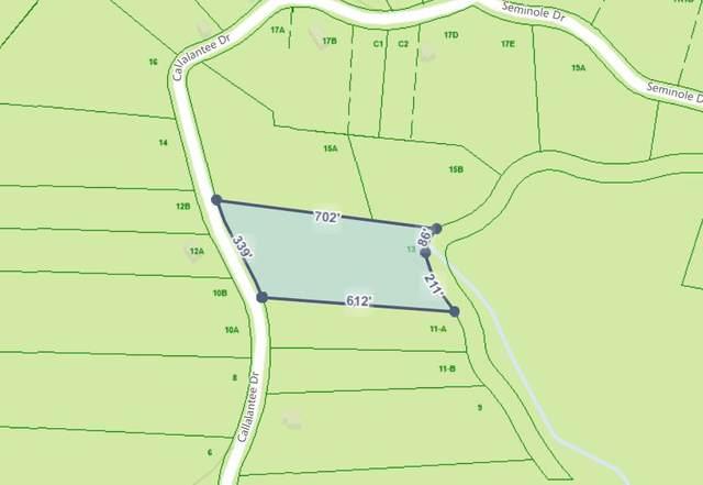 Tbd Callalantee Drive, Mountain City, TN 37683 (MLS #9915665) :: Conservus Real Estate Group