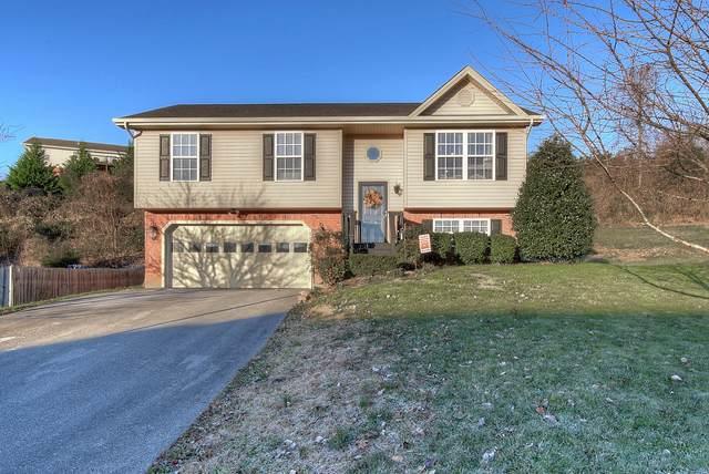 1349 Meadow Creek Lane, Jonesborough, TN 37659 (MLS #9915677) :: Red Door Agency, LLC