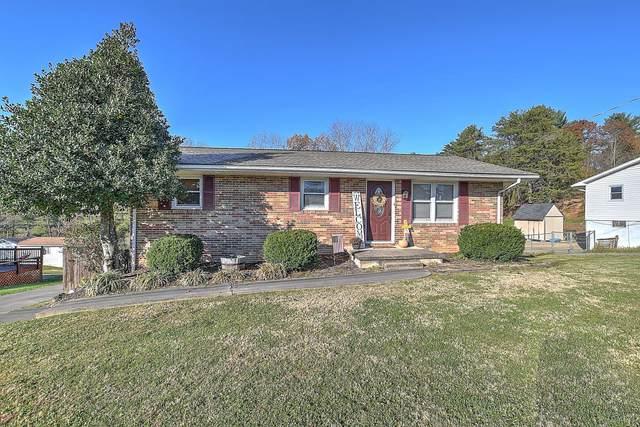 3020 Lowrance Drive, Kingsport, TN 37660 (MLS #9915691) :: Conservus Real Estate Group