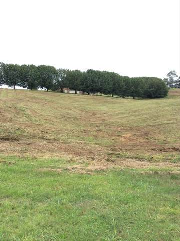 Lot 1 Leedy Shores Lane, Bean Station, TN 37708 (MLS #9915730) :: Conservus Real Estate Group