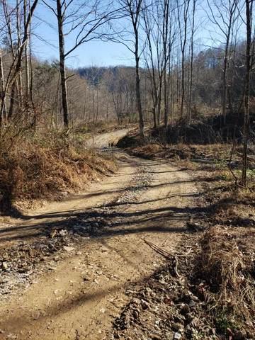 Tbd Poor Valley Road, Saltville, VA 24370 (MLS #9915766) :: Bridge Pointe Real Estate