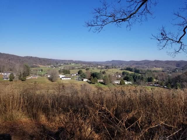191 Ramey Road, Bristol, TN 37620 (MLS #9915785) :: Highlands Realty, Inc.