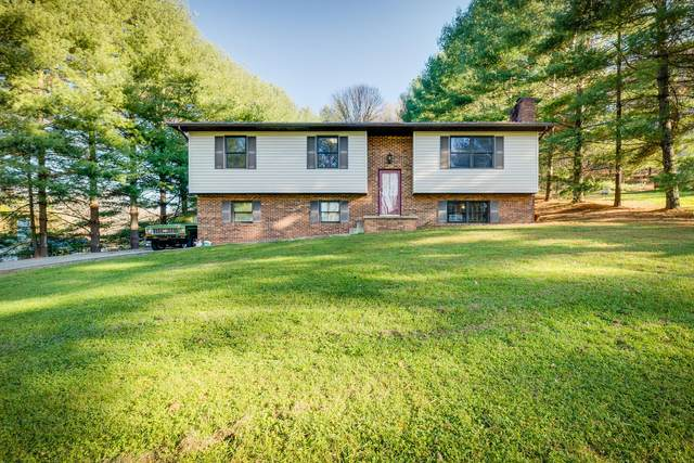 802 Sherbrooke Circle, Mount Carmel, TN 37645 (MLS #9915797) :: Red Door Agency, LLC