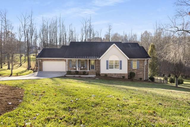 146 Polo Drive, Blountville, TN 37617 (MLS #9915812) :: Bridge Pointe Real Estate