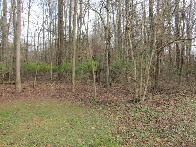 00 Baywood Drive Drive, Piney Flats, TN 37686 (MLS #9915845) :: Conservus Real Estate Group
