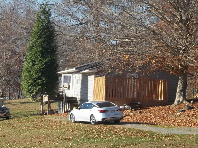 143 Bass Lane, Rogersville, TN 37857 (MLS #9915846) :: Red Door Agency, LLC