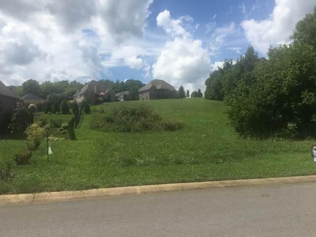 109 Forest Lane, Blountville, TN 37617 (MLS #9915862) :: Red Door Agency, LLC