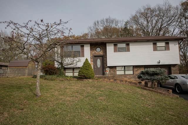 200 Castle Avenue, Church Hill, TN 37642 (MLS #9915886) :: Red Door Agency, LLC