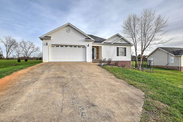 278 Anderson Street, Limestone, TN 37681 (MLS #9915895) :: Bridge Pointe Real Estate