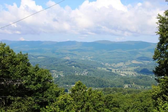 00 Callalantee Drive, Mountain City, TN 37683 (MLS #9915907) :: Bridge Pointe Real Estate