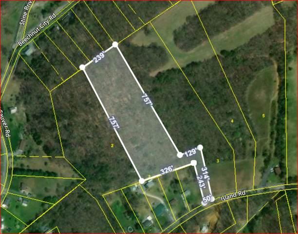 Tbd Tract2 Island Road, Blountville, TN 37617 (MLS #9915998) :: Conservus Real Estate Group