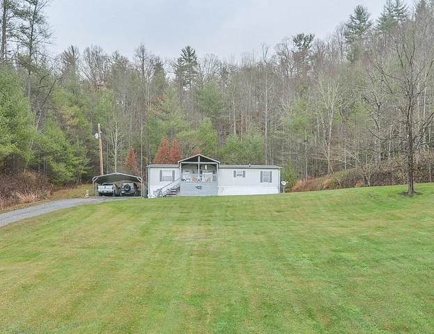 513 Raven Cliff Road, Erwin, TN 37650 (MLS #9916024) :: Tim Stout Group Tri-Cities