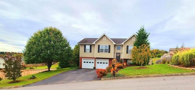 33 Lorena Lane, Jonesborough, TN 37659 (MLS #9916031) :: Red Door Agency, LLC