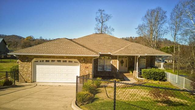 120 Shadow Wood Lane, Kingsport, TN 37663 (MLS #9916107) :: Bridge Pointe Real Estate