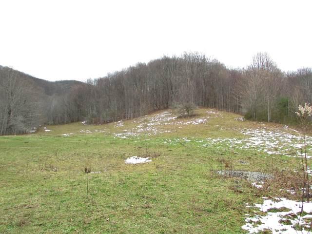 845 Shell Creek Road, Roan Mountain, TN 37687 (MLS #9916173) :: Tim Stout Group Tri-Cities