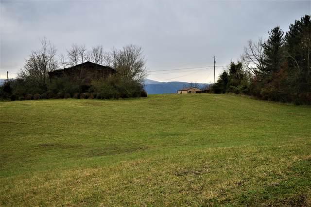 Tbd Ayers Lane Lane, Greeneville, TN 37745 (MLS #9916174) :: Tim Stout Group Tri-Cities