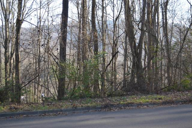 1517 Strawberry Lane Lane, Johnson City, TN 37604 (MLS #9916293) :: Conservus Real Estate Group