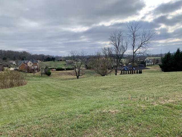 213 Forest Court, Blountville, TN 37617 (MLS #9916321) :: Conservus Real Estate Group