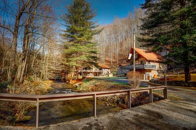 805 Tiger Creek Road #1, Roan Mountain, TN 37687 (MLS #9916423) :: Conservus Real Estate Group