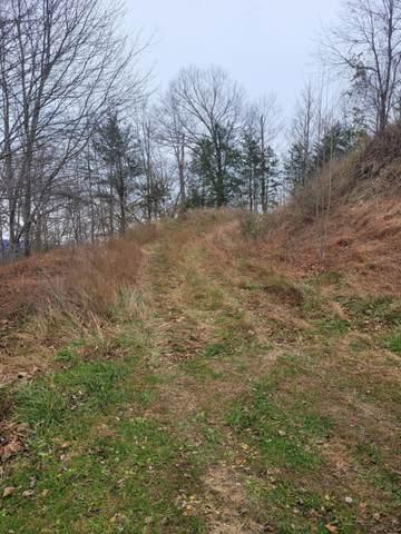 Tbd Big Ridge, Haysi, VA 24256 (MLS #9916451) :: Highlands Realty, Inc.