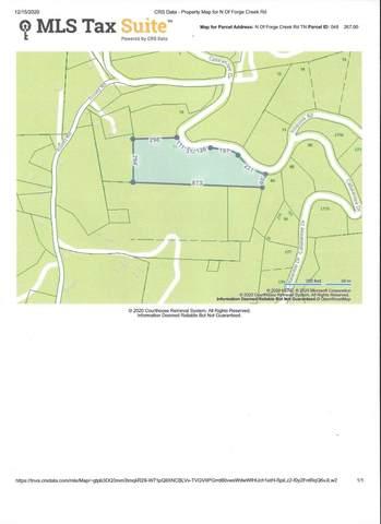Xxx Callalantee Drive, Mountain City, TN 37683 (MLS #9916519) :: Conservus Real Estate Group