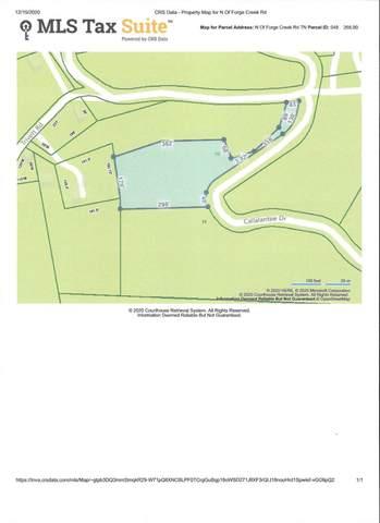 Yyy Callalantee Drive, Mountain City, TN 37683 (MLS #9916527) :: Bridge Pointe Real Estate