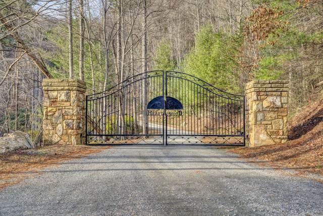 Lot 24 Mays Ridge Road, Butler, TN 37640 (MLS #9916591) :: Bridge Pointe Real Estate