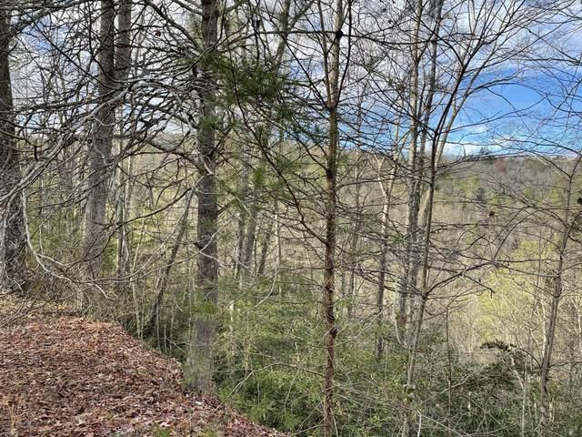 0 Hawk View Way, Newport, TN 37821 (MLS #9916619) :: Red Door Agency, LLC