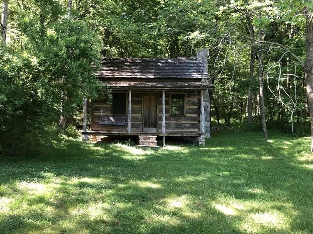 635 Pleasant View Way, Parrotsville, TN 37843 (MLS #9916920) :: Red Door Agency, LLC